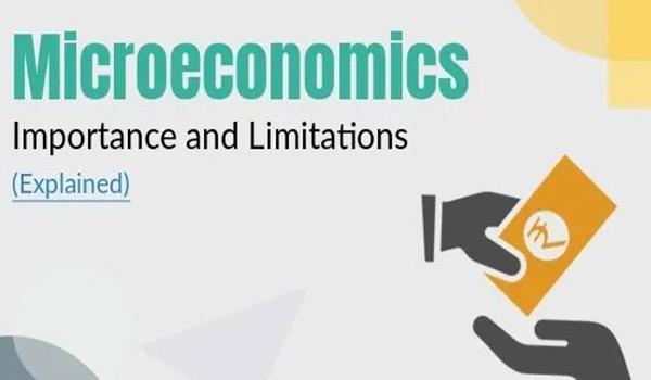 Micro-economic Factors